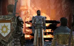 dragonage_screen005.jpg