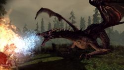 dragonage_screen019.jpg