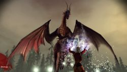 dragonage_screen020.jpg
