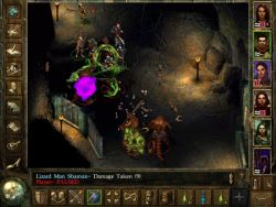 icewinddale_screen012.jpg