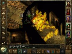 icewinddale_screen013.jpg