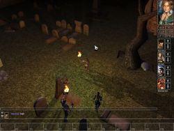 neverwinter_screen023.jpg