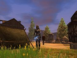 neverwinter2_screen006.jpg