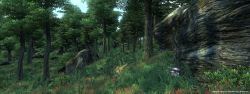 oblivion_screen004.jpg