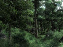 oblivion_screen015.jpg