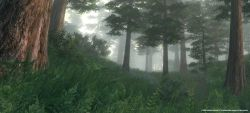oblivion_screen003.jpg